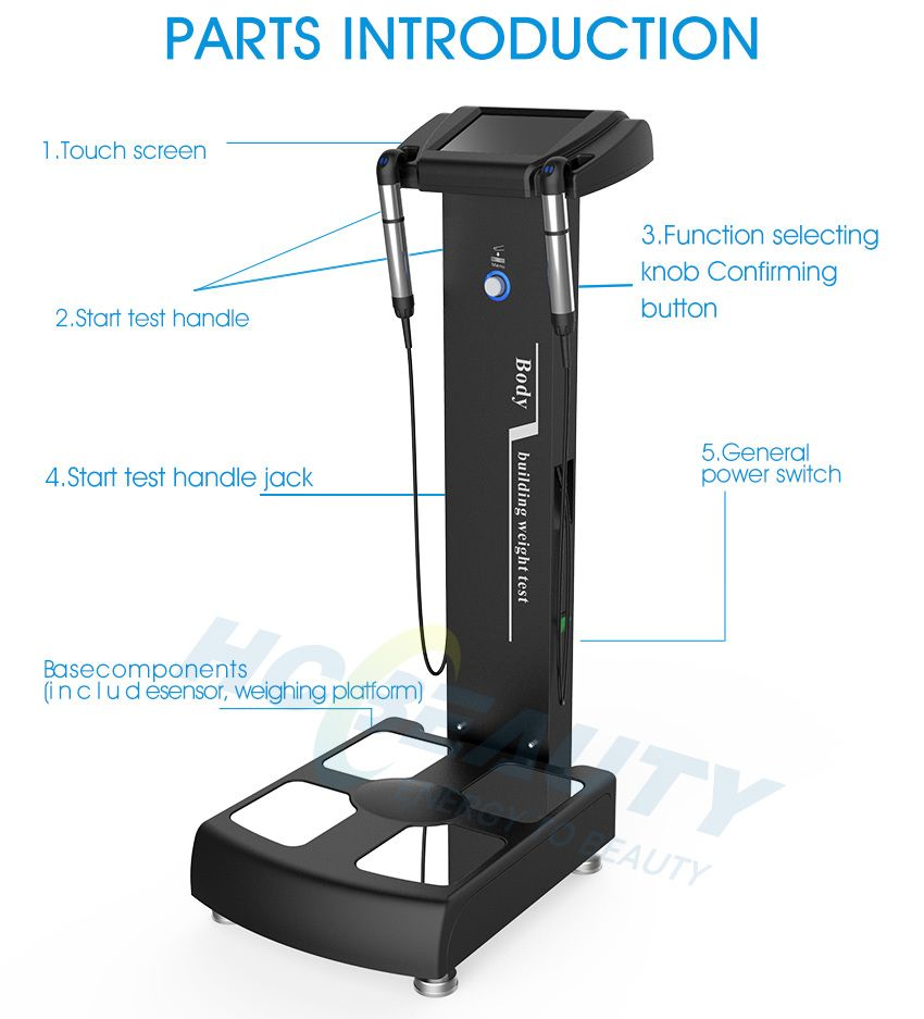 body composition wi fi scale